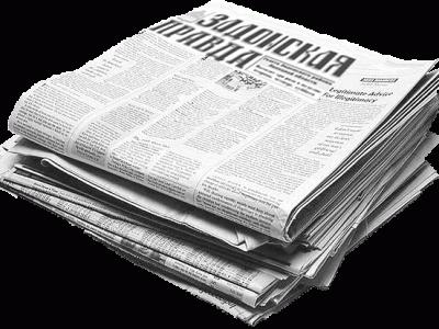 Создать интернет газету организации с собственным доменом