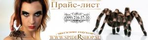 Продажа пауков птицеедов, скорпионы, самки, самцы обновлен 23.07.2016