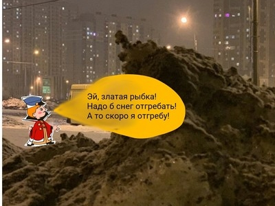Питерский сугроб стал звездой соцсетей