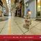Японский котячий Cat Street View