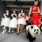 Собака-панда, новый тренд Китая