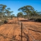 Великие заборы Австралии