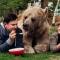 Необычна семья с медведем